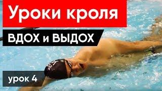 Как правильно плавать брассом и дышать