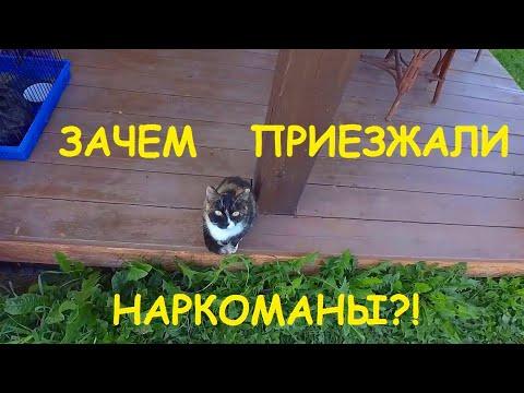 ОЧЕНЬ СТРАННЫЙ СЛУЧАЙ! 17.08.21