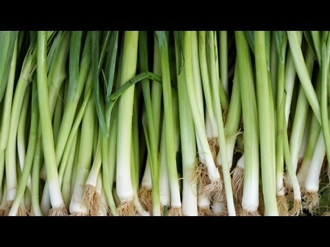 , title : 'How to Grow Leeks | At Home With P. Allen Smith