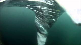 Ocean WHIRLPOOL aka the Sea Tornado