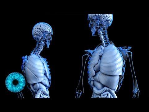 Der Schmerz nach die Ränder gibt in den Rücken und die Beine zurück