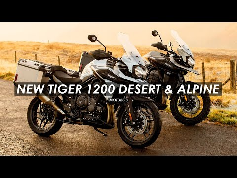 2020 Triumph Tiger 1200 Desert Edition in Shelby Township, Michigan - Video 1