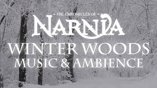 Chronicles of Narnia | Winter Woods Music & Ambience – Relaxing Music with Sounds of Winter