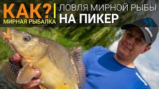 Ловля рыбы на все возможные данные снасти и фидер