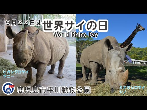 平川動物公園 世界サイの日