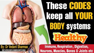 How To Increase Immunity Power In Body Naturally Hindi  How To Improve Dige