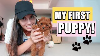 Vlog: My FIRST DOG ! First 24 hours with a PUPPY 🐶