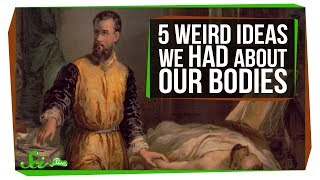 5 Things Humans Got Really Wrong About Our Bodies - Video Youtube