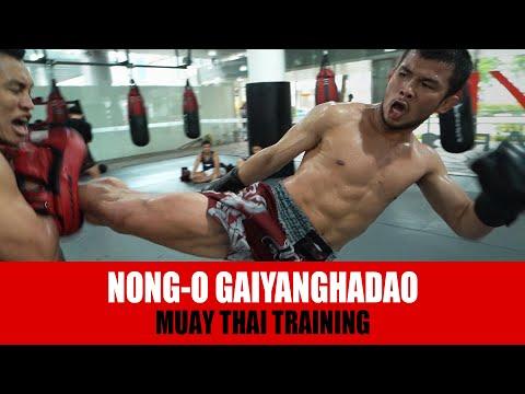 Muay Thai   Nong O Gaiyanghadao is a BEAST!