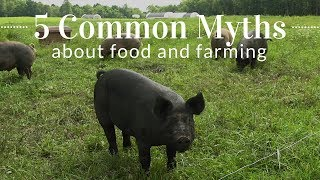 5 Common Myths About Food & Farming (VIDEO)