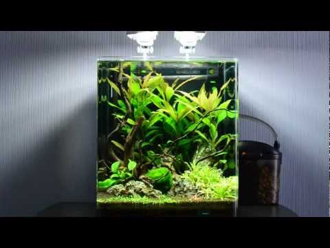 what is a nano fish tank yahoo answers. Black Bedroom Furniture Sets. Home Design Ideas