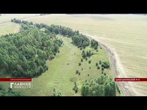 Около 300 га сельхозземель причислены к заброшенным. Первый областной. Главные новости 04.09.2020