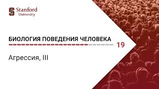 Биология поведения человека: Лекция #19. Агрессия, ІII [Роберт Сапольски, 2010. Стэнфорд]