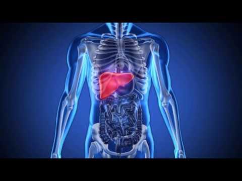 Асцит печени и лечение