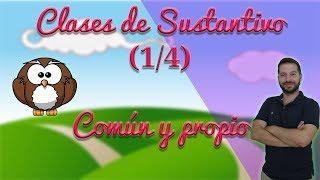 Clases de sustantivos (1/4): común y propio. (Aprendo y me divierto con Miguel y sus amigos)