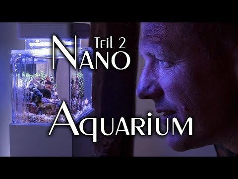 Nano Salzwasseraquarium Teil 2