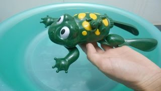 Lovely Frog Toy in Swimming Pool - Water Toy for Babies Toddlers