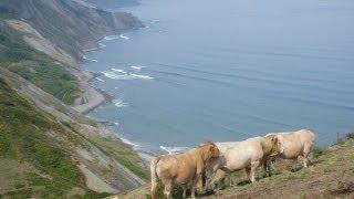 Connemara cradle song - Steeleye Span - Bedlam born - Connemara