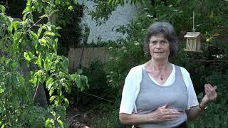 Die Weisse Rose. Karin Schönbergers Permakultur-Waldgarten