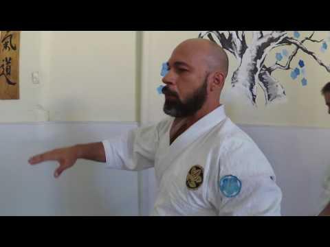 Entrevista com Sensei Thiago Santana para o Canal Full Fight