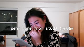 sent home from study abroad :( NYC vlog
