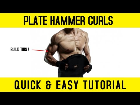 HAMMER CURLS WITH PLATE | AWESOME BICEP EXERCISE!