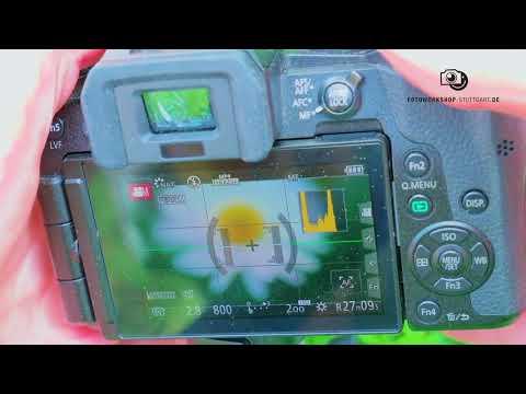 Fokussieren beim Filmen mit Spiegelreflex und Spiegellosen Kameras am Beispiel Panasonic und Canon