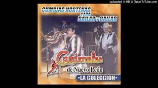 Cardenales de Nuevo Leon-Cumbias mix(DJ Mayo)