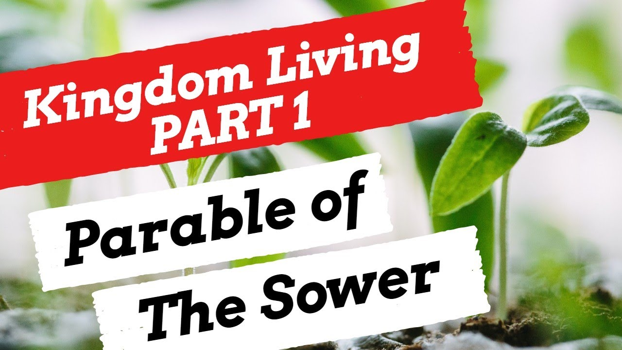 The Parable of the Sower Bible Study
