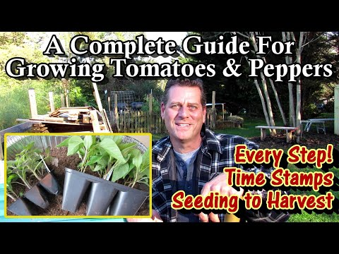 , title : 'A Complete Guide for Growing Tomatoes & Peppers - Seed to Harvest: Every Step!/Table of Contents