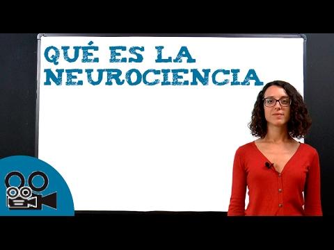 Qué es la Neurociencia