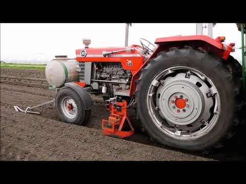 Aardbeien planten / Planting Strawberries / Erdbeeren pflanzen / Massey Ferguson / Drone Landbouw