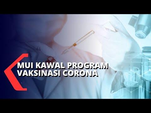 mui kawal program vaksinasi covid-