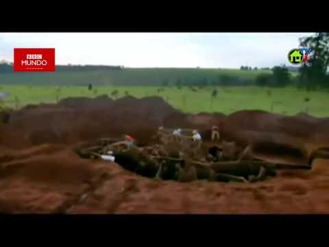 Desenterrando un Hormiguero.