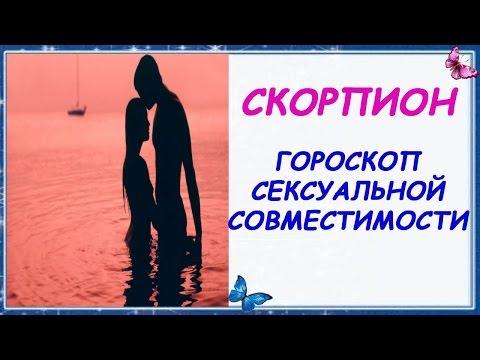Гороскоп секс совместимости Скорпиона с другими знаками Зодиака Партнеры Скорпиона Гороскоп Скорпион