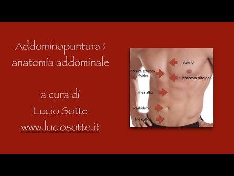 Operazione su gambe varicosity di vene