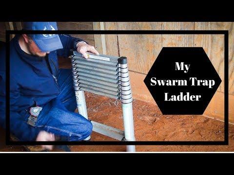 My Swarm Trap Ladder