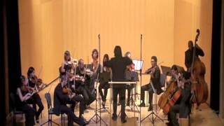 preview picture of video 'A. G. Villoldo - ¿Qué hacés chamberguito? - Orquesta Ciudad de Orihuela'