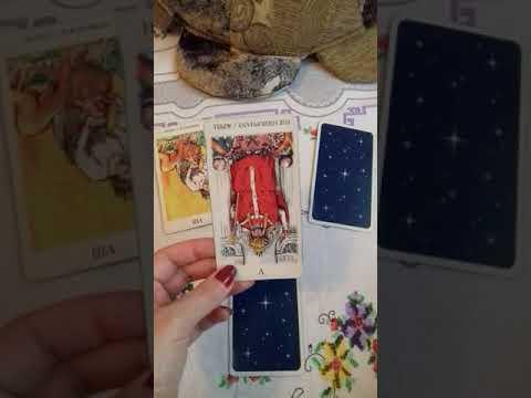 Гороскоп для дев от павла глобы на 2017 год