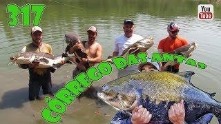 Programa Fishingtur na TV 317 - Pesqueiro Córrego das Antas