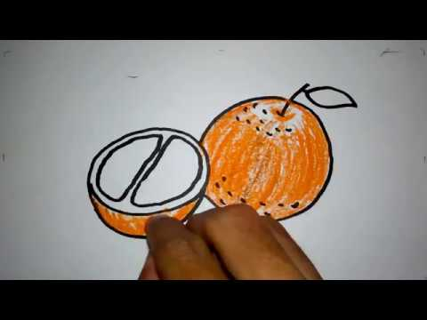 Belajar Menggambar Buah Jeruk Untuk Anak Paud Tk Sd Mp3 Stafaband
