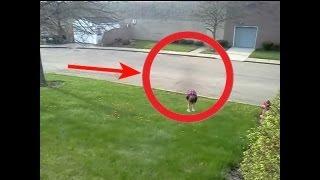 Смотреть онлайн Реальный призрак возле дома