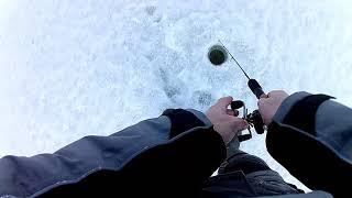 Рыбалка в марте на окуня балду