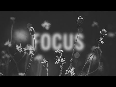 Deorro & Lena Leon – Focus Video