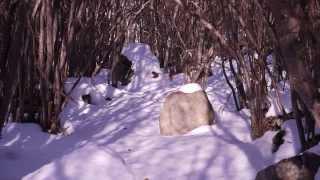 preview picture of video 'Les Planes de Son a l'hivern'