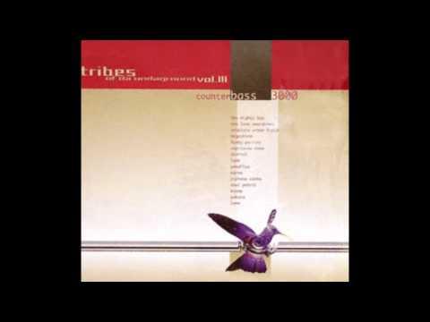 Megashira - Microcosmos (Future Dub)