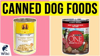 10 Best Canned Dog Foods 2020
