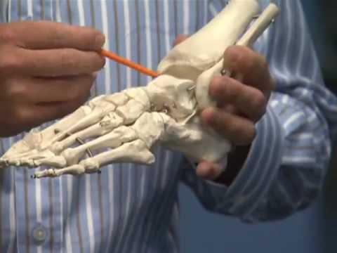 Csípő-disztrófia kezelés
