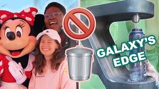 I Tried To Do Disneyland Zero Waste