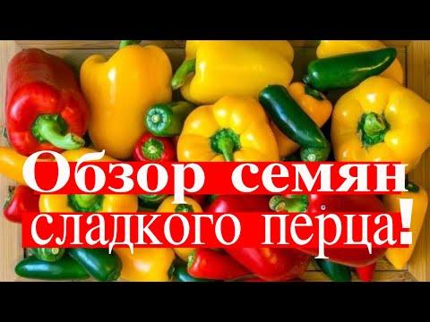 , title : 'ПЕРЦЫ СЛАДКИЕ,  ТОЛСТОСТЕННЫЕ, МЯСИСТЫЕ. ТопСад